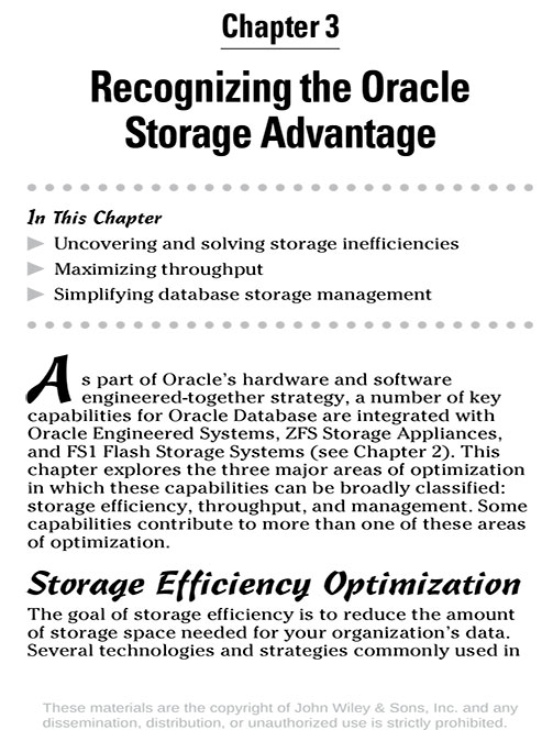 Database Storage For Dummies Book V2