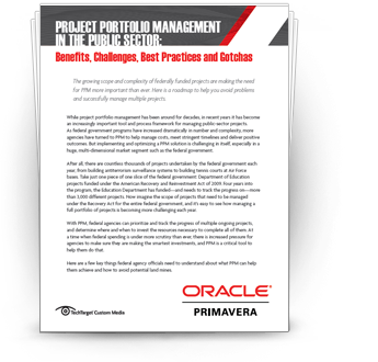 Roadmap for Project Portfolio Management (PPM) Successes in the Public Sector