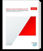 Enterprise Security for Big Data Environments