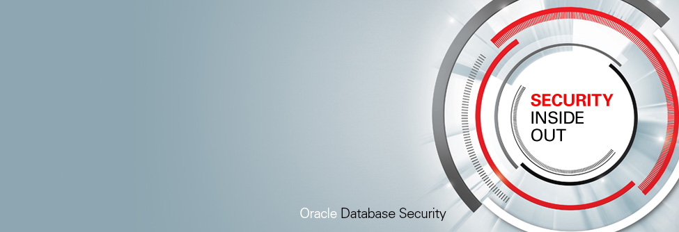 DBA – Security Superhero